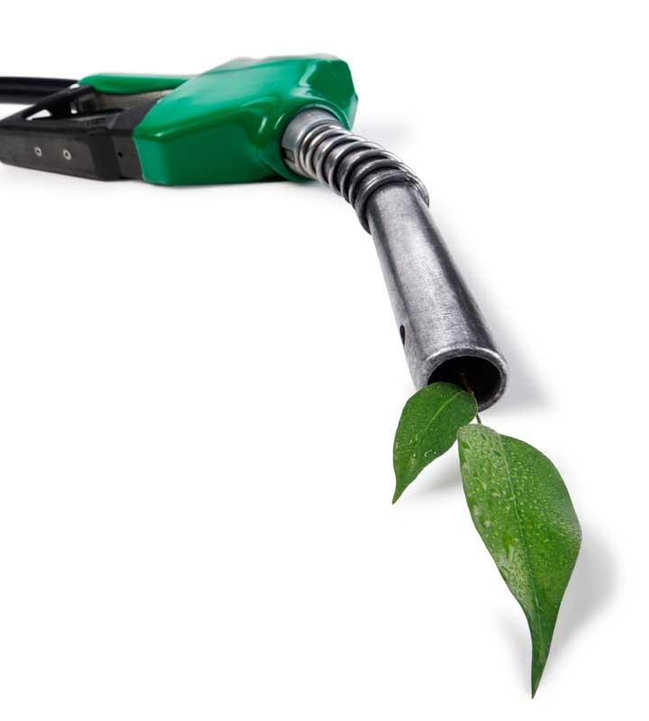 Biocombustíveis: uma perspectiva renovável