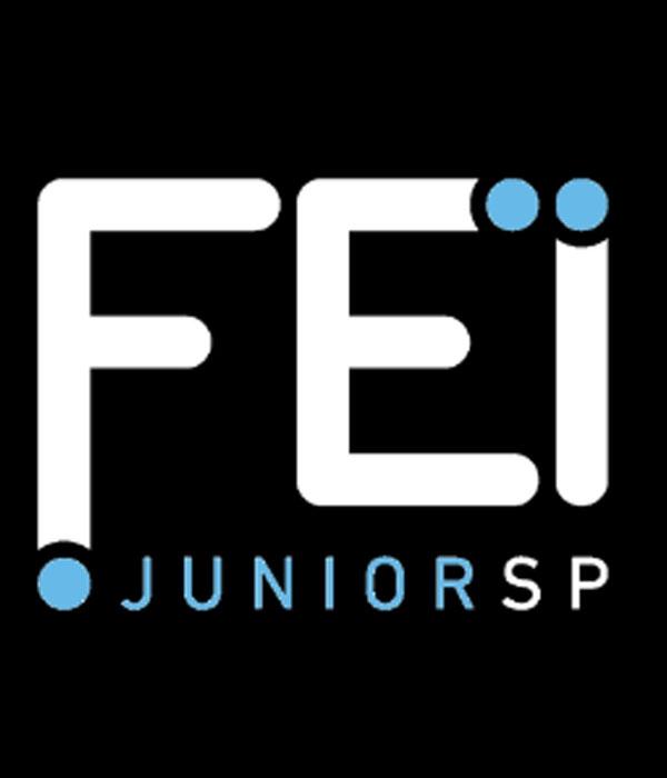 Empresa Júnior da FEI cria projeto de apoio a pequenos negócios