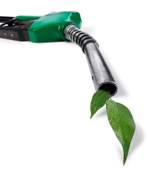 Professor da FEI fala à Record News sobre as mudanças na nova gasolina
